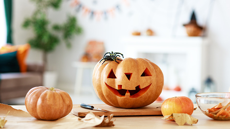 How to make the most of Halloween in Elsternwick Village