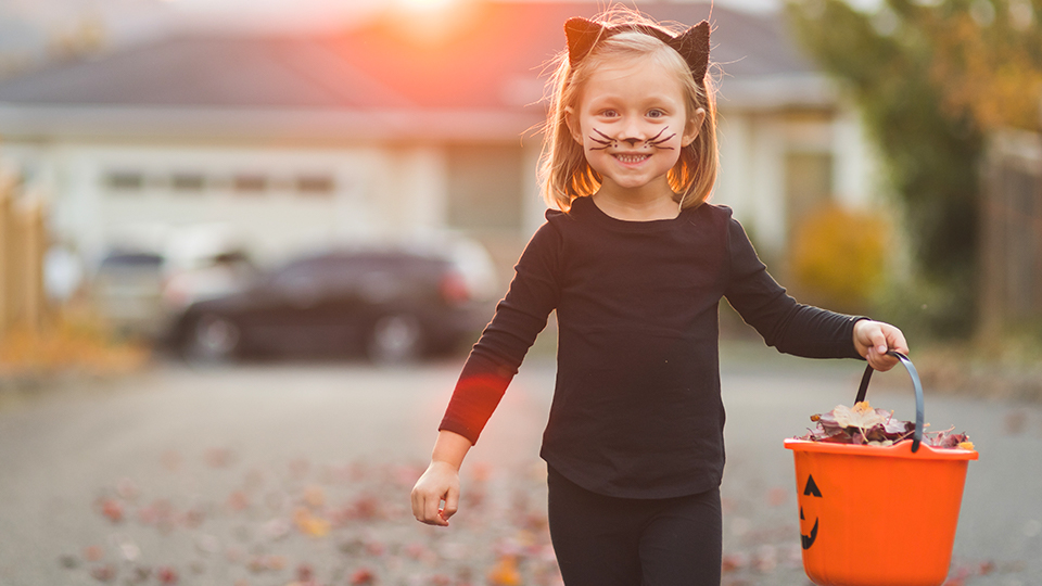 Get everything you need for Halloween in Elsternwick Village